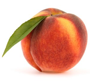 elberta peach